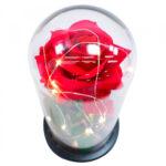 Luminária Rosa Encantada A Bela E A Fera 24x12cm