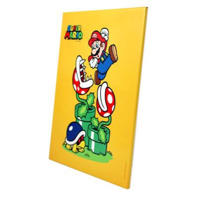 Quadro Super Mario Bros Em Metal 19×26