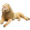 Pelúcia Leão Realista Deitado 103cm